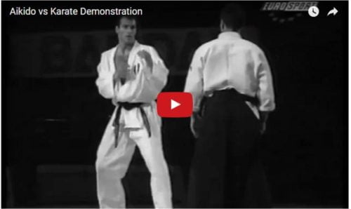 aikido-karateka