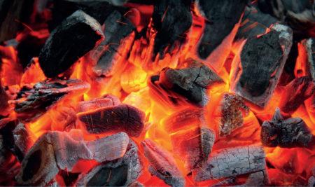 Zapraszamy na grillostaż w Shin Dojo!